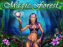Magic Forest — эмулятор от Playson с фриспинами